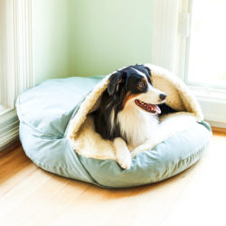 luxury-cozy-cave-dog-bed-snoozer-pet-products-microsuede