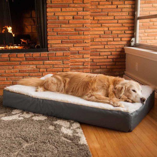 Super Orthopedic Lounge Dog Bed W Cream Sherpa Snoozer