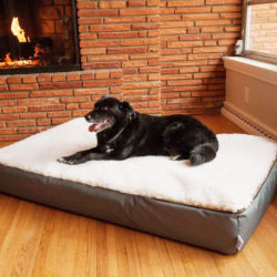 Rectangular Super Orthopedic Dog Bed Snoozer Pet Products