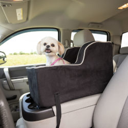 Snoozer Luxury High Back Console Dog Car Seat