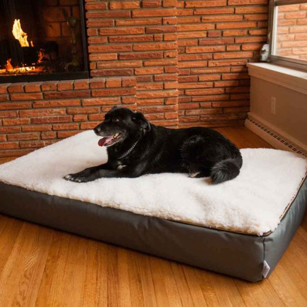 Super Orthopedic Lounge Dog Bed w/ Cream Sherpa
