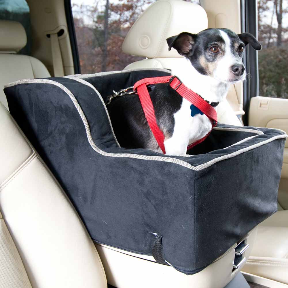 Best Luxury Car Back Seat Carseat