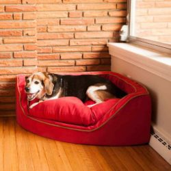 Replacement Cover - Luxury Overstuffed Corner Dog Bed with Microsuede