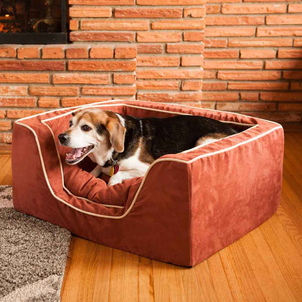 replacement cover snoozer luxury square dog bed w. Black Bedroom Furniture Sets. Home Design Ideas
