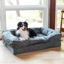 forgiveness-dog-sofa-snoozer-pet-products
