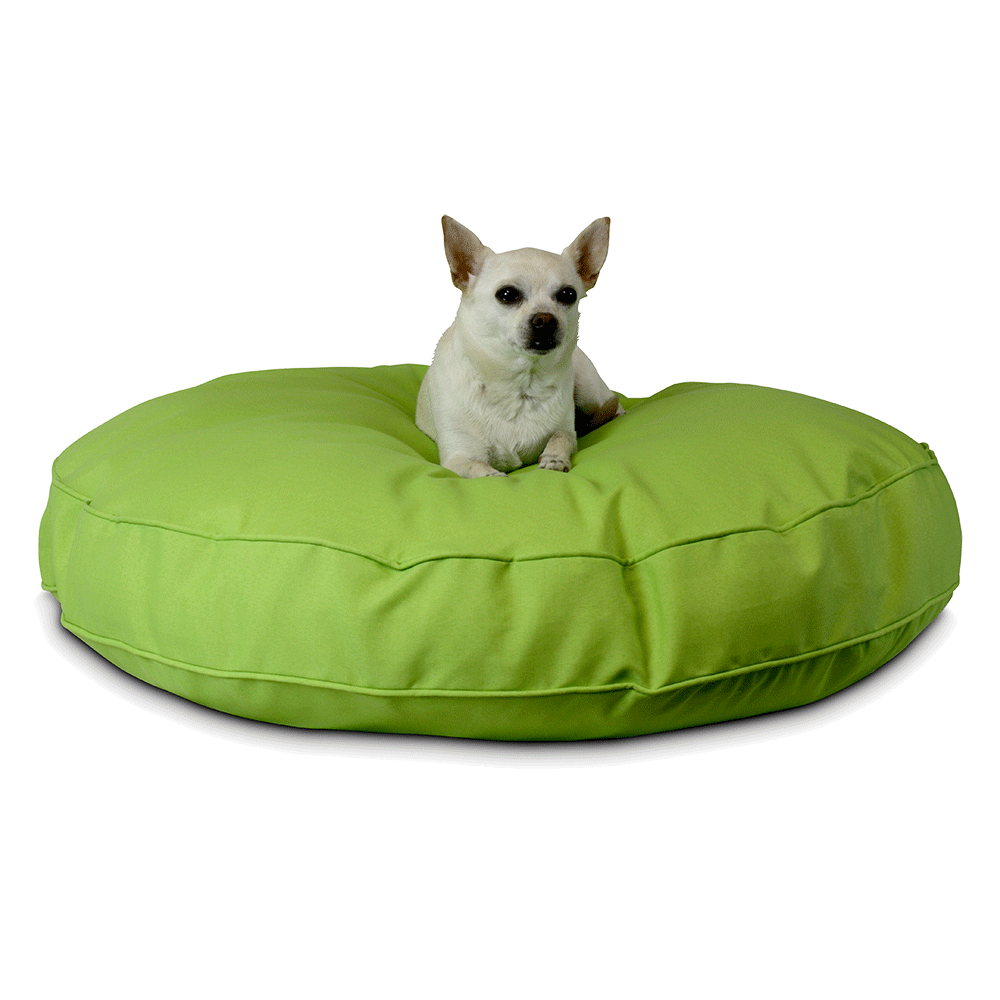 Lime | Snoozer Pet Products