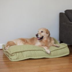 Replacement Cover - Pillow Top Dog Bed
