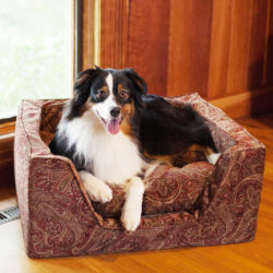 Snoozer Square Dog Bed with Memory Foam - The Show Dog Collection