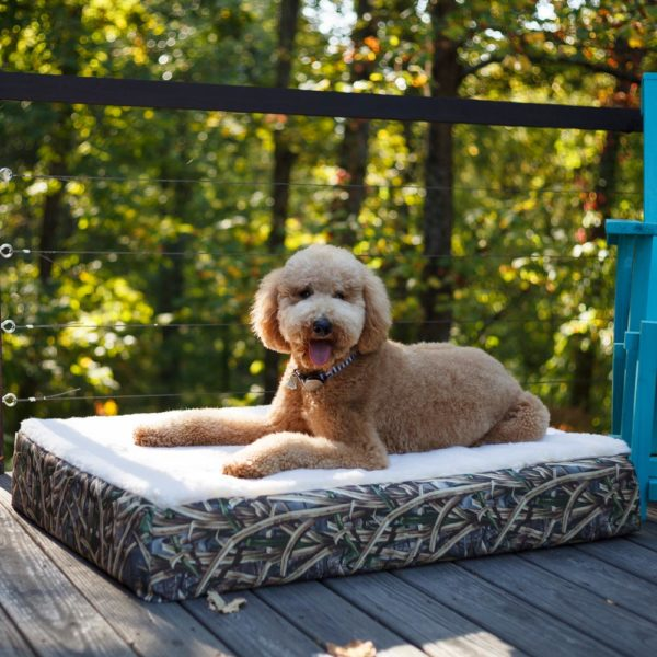Super Orthopedic Lounge Dog Bed w/ Cream Sherpa- Untamed Collection
