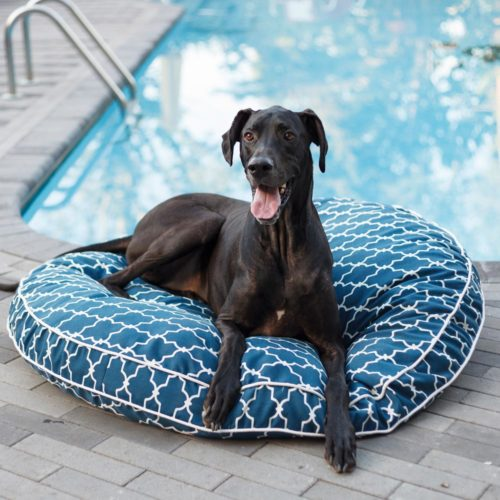 Pool & Patio Round Dog Bed