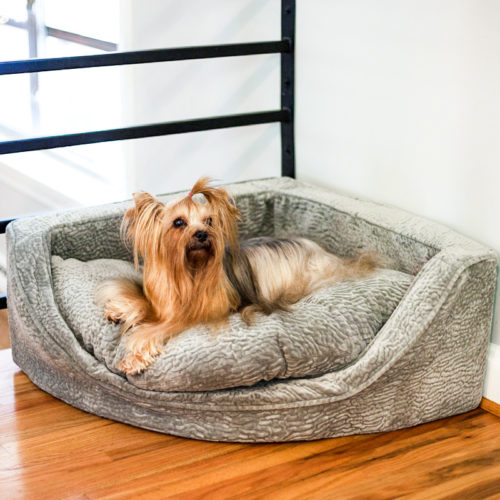 luxury-corner-dog-bed-snoozer-pet-products-show-dog-collection