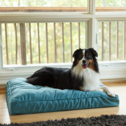 Replacement Cover - Orthopedic Pillow Top Dog Bed