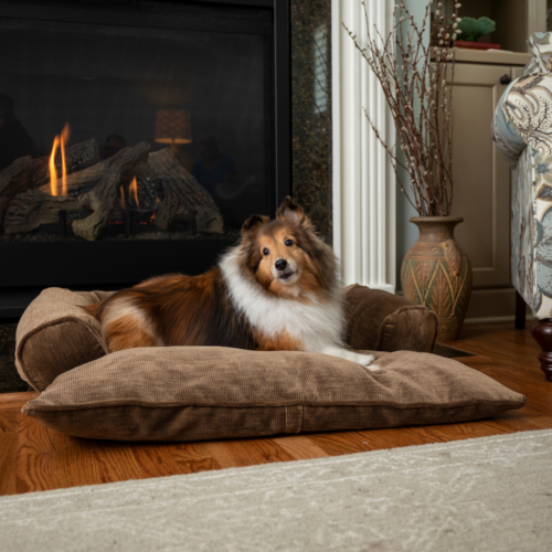 Doggy Day Bed with Bolsters - Snoozer Pet Products