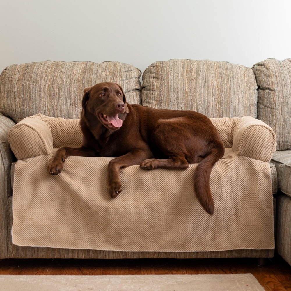 Couch Companion Bolstered Sofa Throw Snoozer