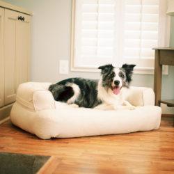 Snoozer Pet Products Luxury Sleeper Sofa