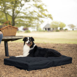 Snoozer Travel Mate Outdoor Dog Bed